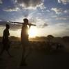Warriors bringing in the livestock, Omo valley, Ethiopia