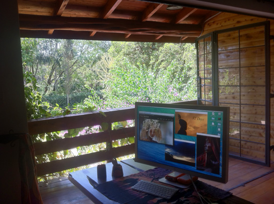 office in Nature - captured on the iPhone 4 - at the house in Nairobi