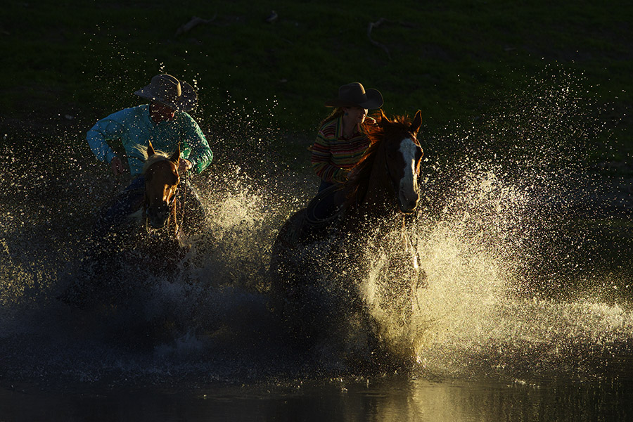 Horse-Photography-workshop-BV2U9697