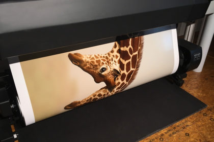 Printing the winning photograph from Natures best Africa