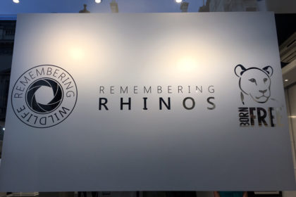 Remembering Rhinos exhibit sign in the window of the gallery